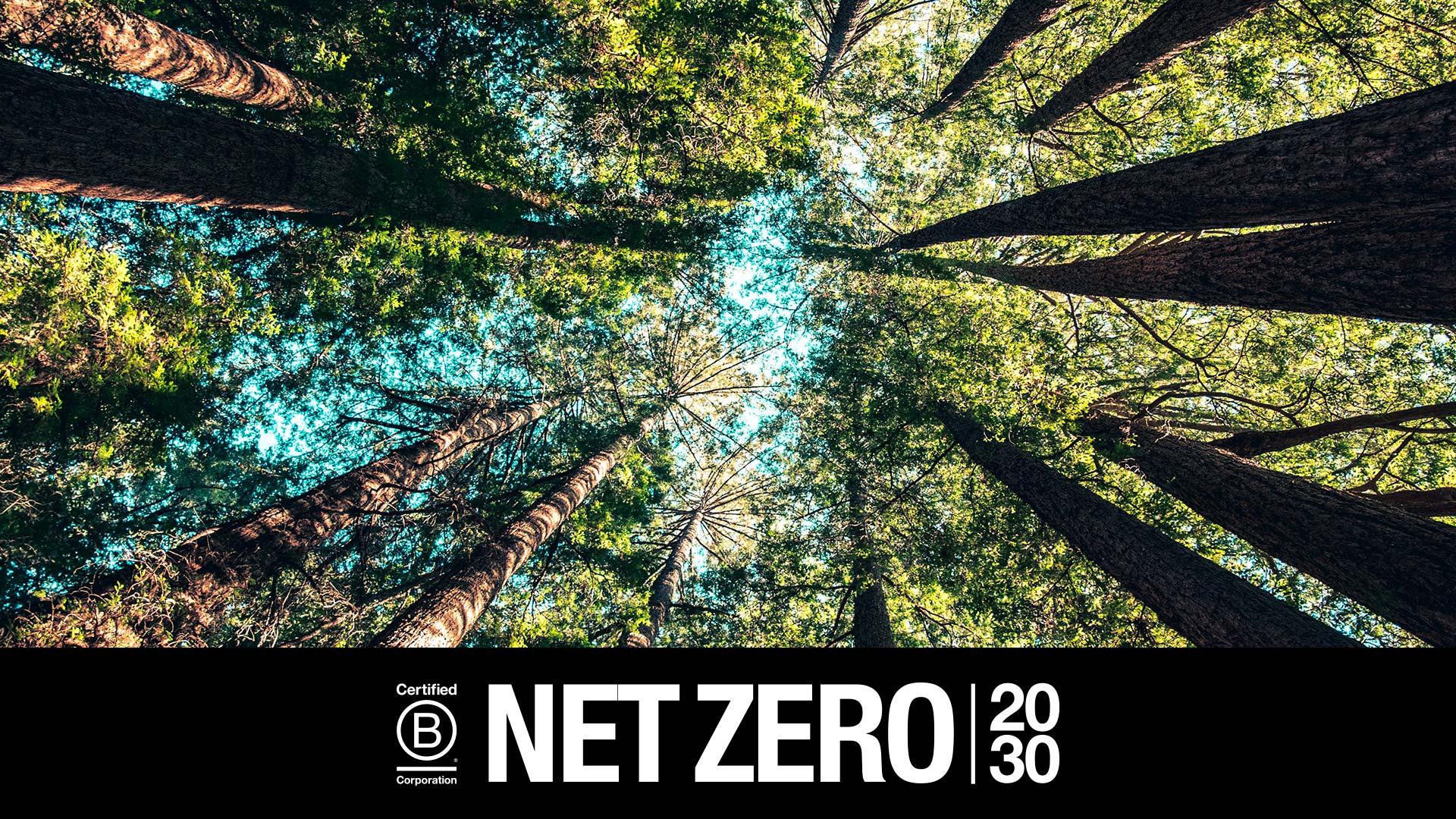 NET ZERO 2030 – Tomamos Ação na Crise Climática