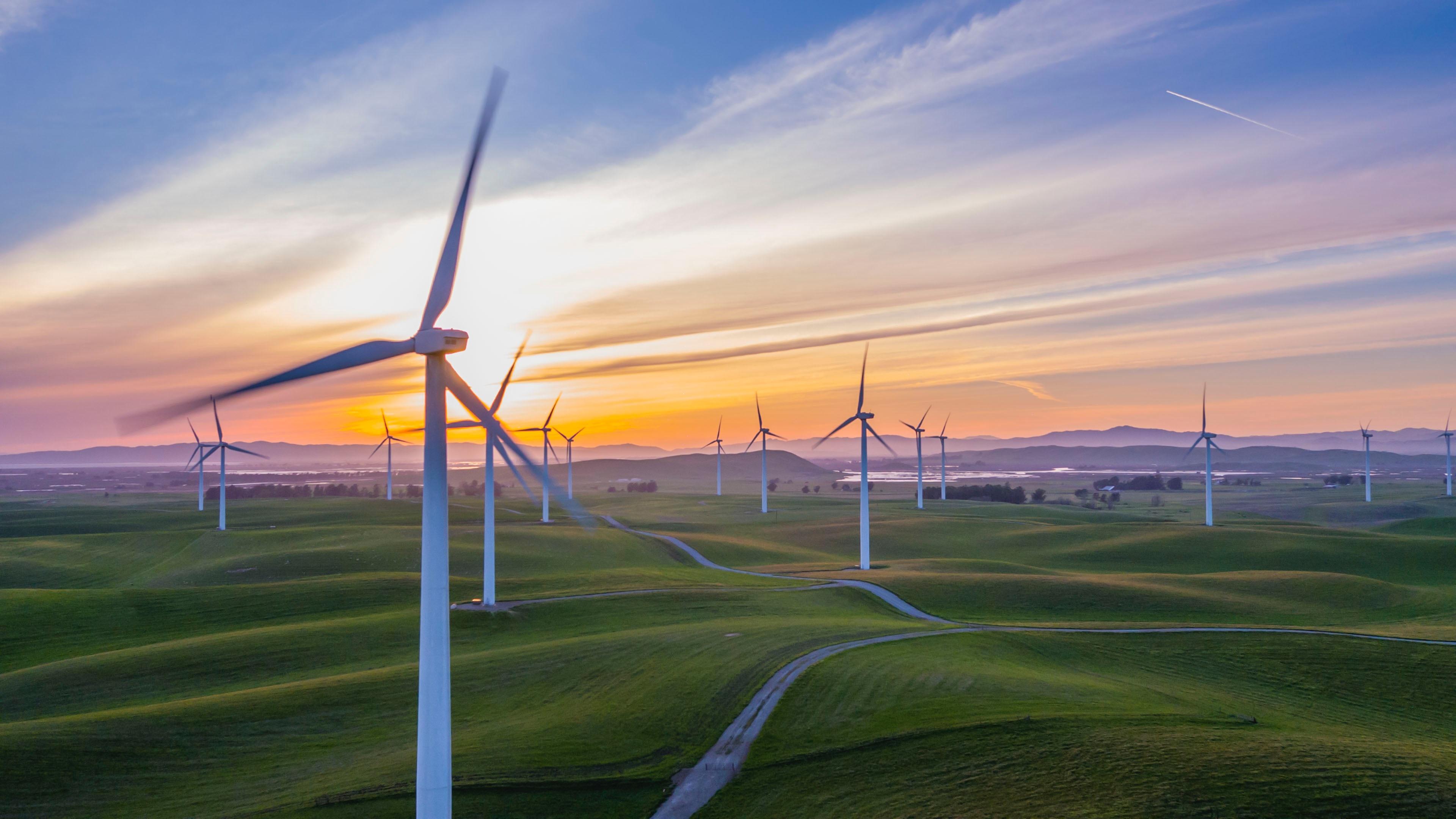 A economia circular e a sustentabilidade potencializadas pelo Blockchain