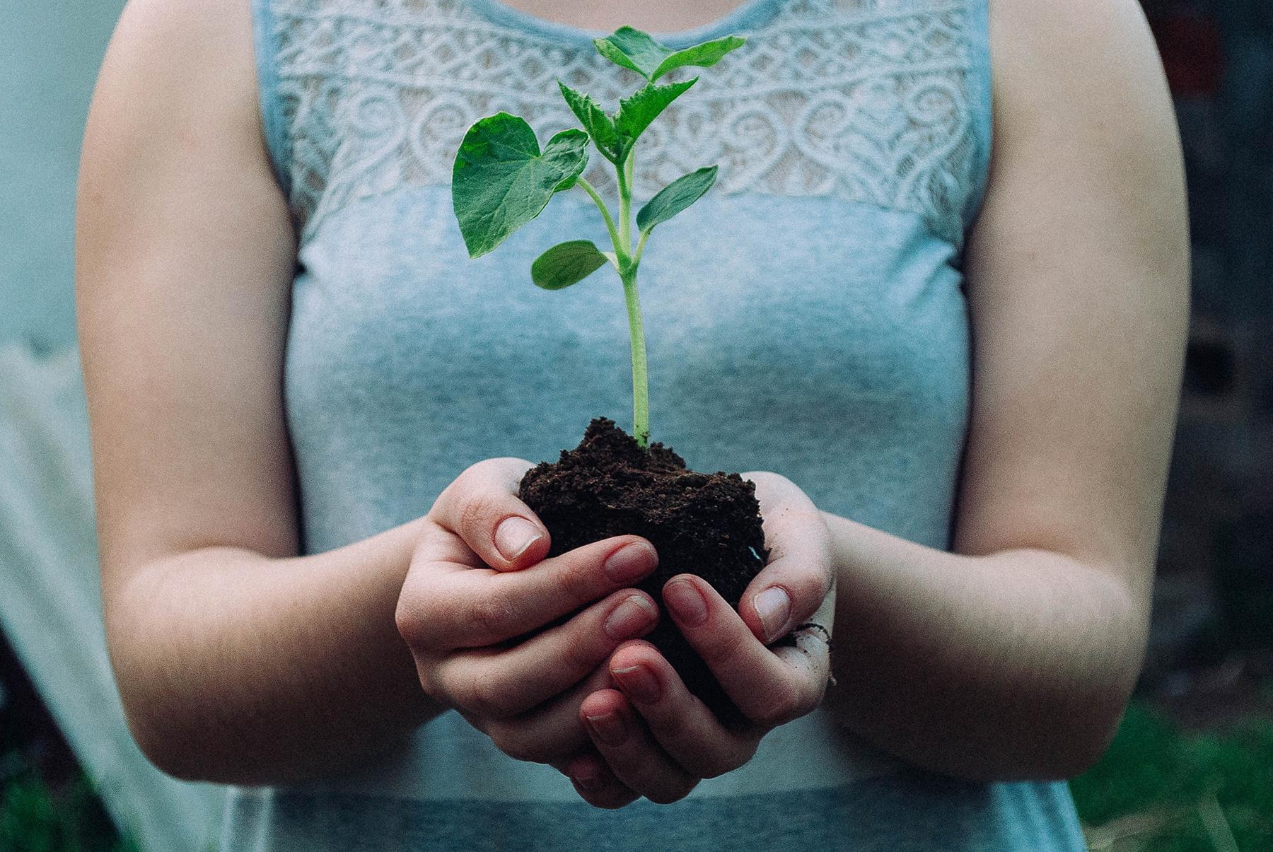 Acelerando o impacto – cinco lições em cinco anos